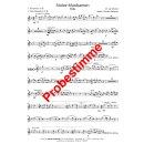 Stolze Musikanten - Polka - Böhmische Besetzung